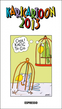 Karicartoon 2013